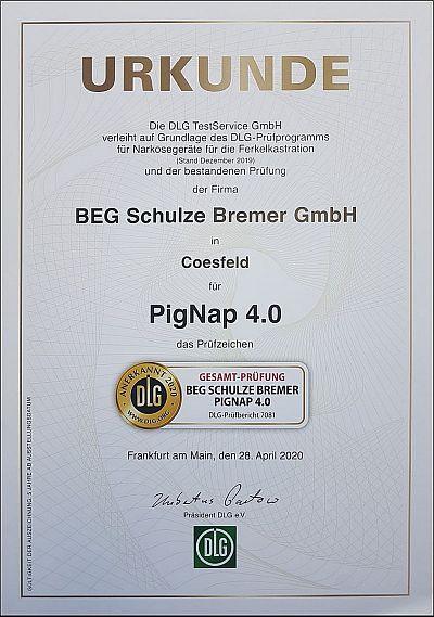 PigNapDLGZertifikatb