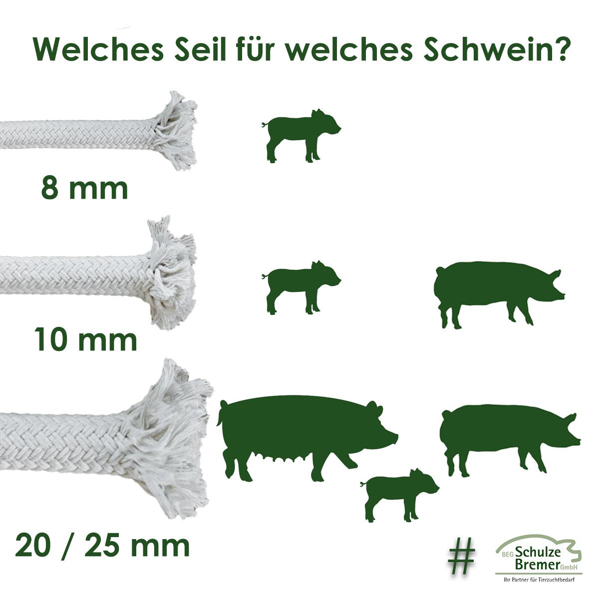 Welches Seil für welches Schwein