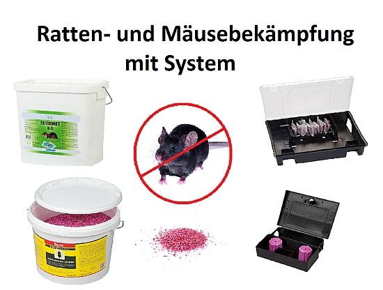 Ratten-und-Maeusebek58e4e25de30f7